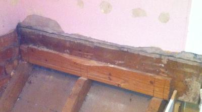 Wall support& plaster